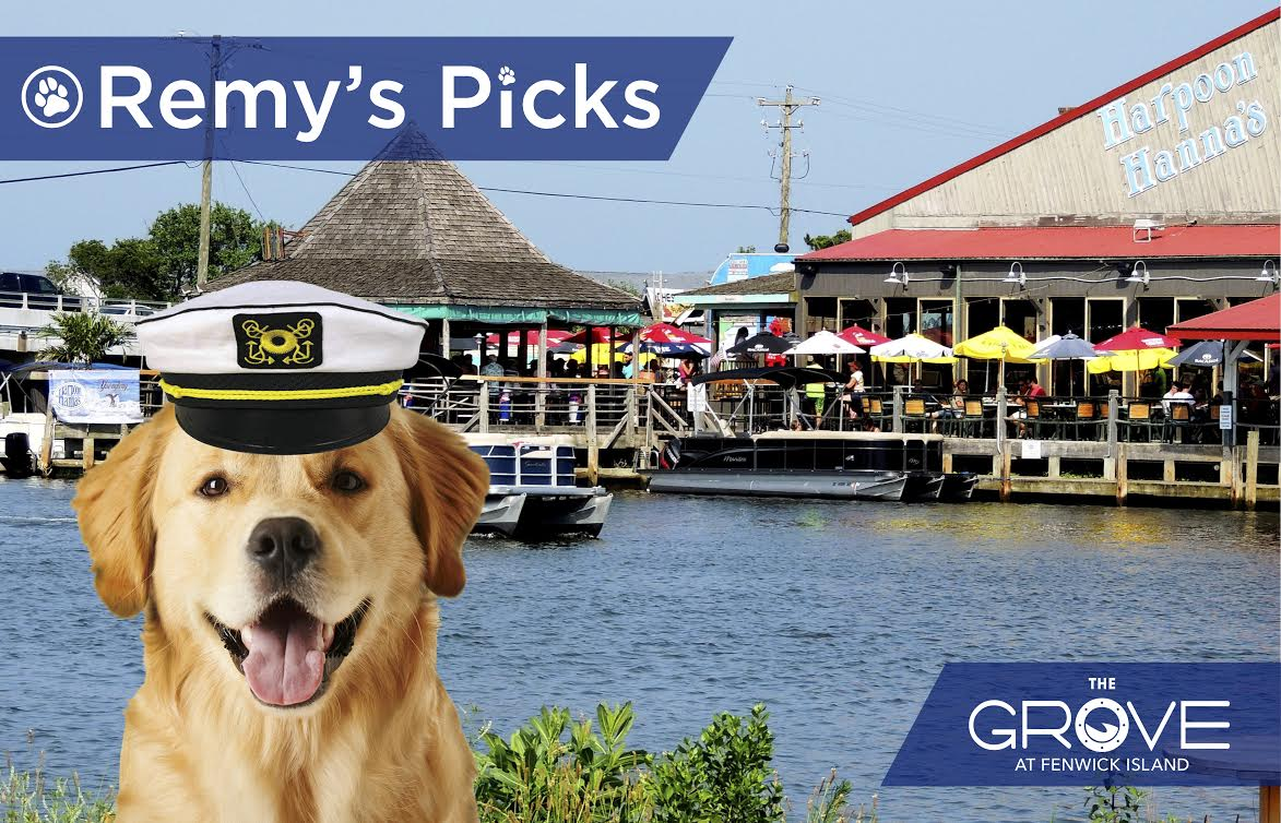 Remy S Picks Fenwick Island Dog Friendly Places Mckee Builders